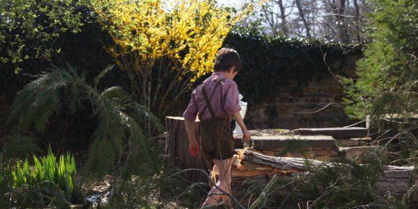 Bosco marchant dans le jardin
