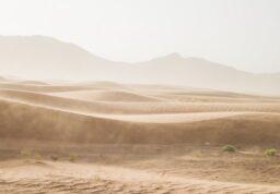 Un paysage désertique